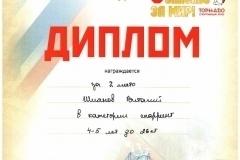 p96_shiyanov2